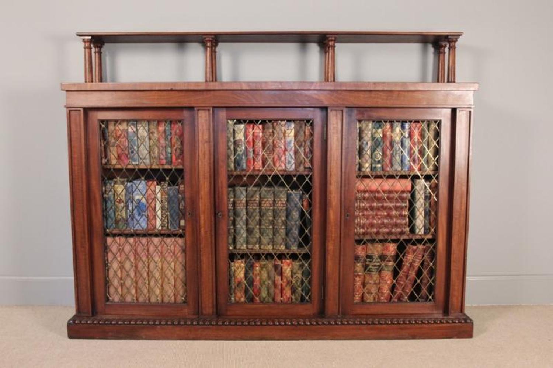 George IV Mahogany Side Cabinet/Bookcase