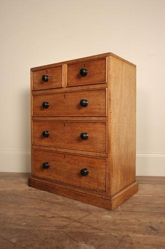 19th Century Table Top Collectors Chest