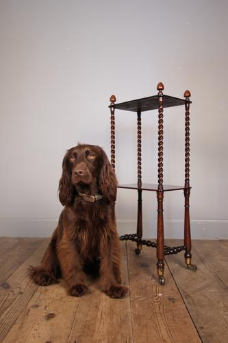Small 19th C Rosewood Whatnot